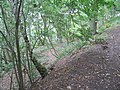 Ramparts at Gaer Fawr hill fort - geograph.org.uk - 568617.jpg