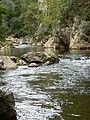 Reka Jerma 06.JPG