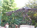 Replica T. rex skeleton, DinoLand USA 2.JPG