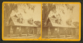 Residence of Mr. & Mrs. H.B. Stowe, St. Johns River, Fla, from Robert N. Dennis collection of stereoscopic views.png