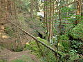 Reste eines mittelalterlichen Erzbergwerks im Oberharz 05.JPG