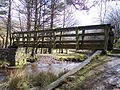River Alport Footbridge - geograph.org.uk - 741788.jpg