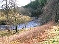 River Ardle, Kindrogan.JPG