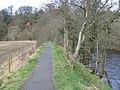 River Ayr Way at Catrine - geograph.org.uk - 350742.jpg