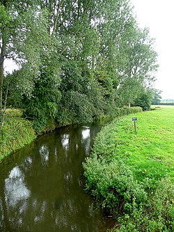 River Enborne from Shalford Bridge.jpg