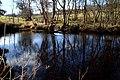 River Eske at Drumlaght - geograph.org.uk - 1720148.jpg