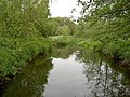 River Maun from the footbridge - geograph.org.uk - 1320091.jpg
