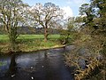 River Nidd - geograph.org.uk - 1264857.jpg