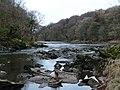 River Ribble, Marles Wood - geograph.org.uk - 1102468.jpg