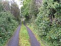 Road at Cloonaquin - geograph.org.uk - 1505871.jpg