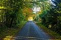 Road near Cairnton - geograph.org.uk - 1622261.jpg