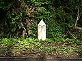 Roadside Milepost - geograph.org.uk - 370084.jpg