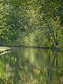 Rochdale Canal (15475056626).jpg