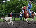 Rodeo Event Calf Roping 35.jpg
