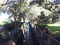 Roselands NSW 2196, Australia - panoramio (2).jpg