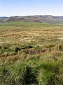 Rough grazing on Hareshaw Hill - geograph.org.uk - 574145.jpg