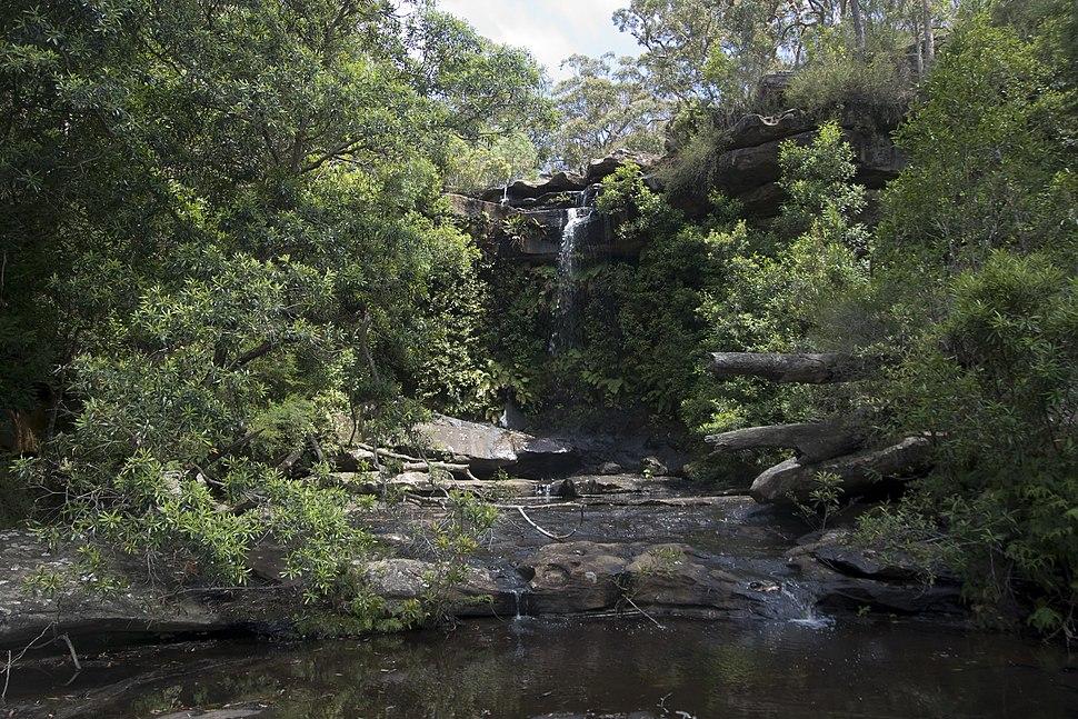 Royal National Park NSW 2233, Australia - panoramio (13)
