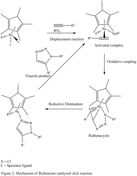 Mechanism for ruthenium-catalysed click chemistry