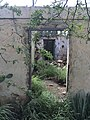 Ruin Old Aruban House 4.jpg
