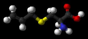 S-Allyl cysteine - Image: S allyl cysteine 3D balls