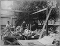 San Francisco Earthquake of 1906, Fresh vegetables and fruits for special diet - NARA - 522938.tif