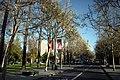 San Jose, CA - panoramio - Vadim Manuylov (10).jpg