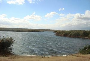 Svetloyarsky District - Lake Sarpa in Svetloyarsky District