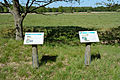 Schleswig-Holstein, Bark, Naturschutzgebiet 30 NIK 4240.JPG