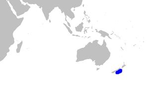 Sherwood dogfish - Image: Scymnodalatias sherwoodi distmap