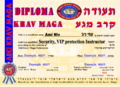 Security, VIP protection Instructor-small.png