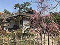 Seifukan Teahouse in Shukkei Garden 2.jpg
