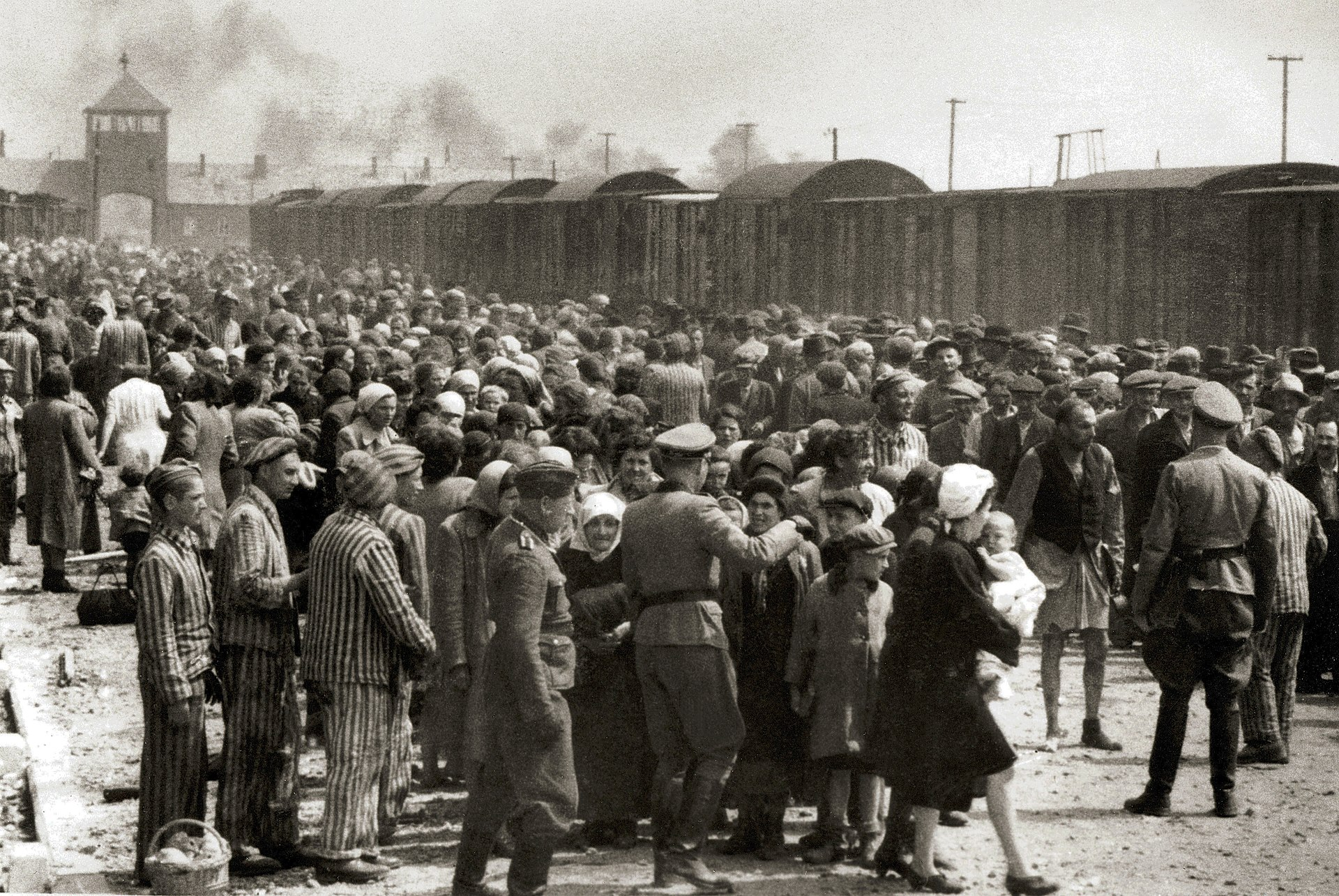 Selection on the ramp at Auschwitz-Birkenau, 1944 (Auschwitz Album) 1a.jpg