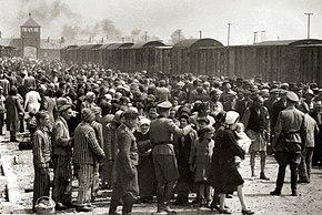 Выбор на рампе Освенцима-Биркенау, 1944 год (Альбом Освенцима) 1a.jpg