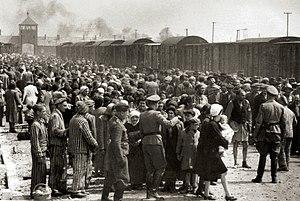 Auswahl auf der Rampe in Auschwitz-Birkenau, 1944 (Auschwitz Album) 1a.jpg