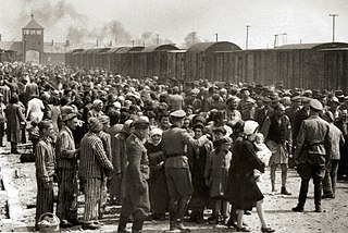 The Holocaust Genocide of the European Jews by Nazi Germany and other groups