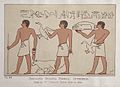 Servants bearing funeral offerings. Tomb of VI Dynasty Period Wellcome L0027404.jpg