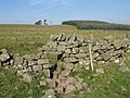 Sheep hole in Hadrian's Wall near Cockmount Hill - geograph.org.uk - 578393.jpg