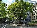 Shizuoka Prefectural Office (4).jpg