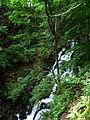 Shypit Mizhhirskyi Zakarpatska-waterfall-2.jpg