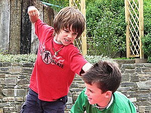 Sibling - Sibling physical conflict