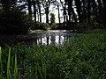 Silverburn Park Pond - panoramio (1).jpg