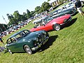 Simply Jaguar Event at Beaulieu (35084227343).jpg