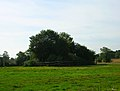 Site of Tote Copse Castle - geograph.org.uk - 236213.jpg