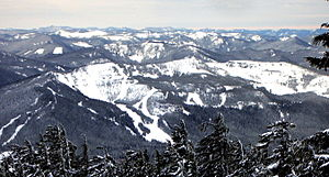 Mount Hood Skibowl - Image: Ski bowl from timberline P1571