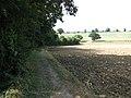 Skirting a field's edge - geograph.org.uk - 1451489.jpg