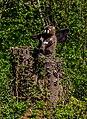 Skulpturenstraße Weisweil jm136366.jpg