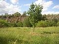 Slanska hora CZ wall of fmr quarry 113.jpg