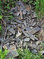 Slate (Knife Lake Formation, metamorphism at 2.7 Ga, Neoarchean; Rt. 135 roadcut, Gilbert, Minnesota, USA) 12 (23507922685).jpg