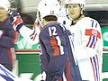 Slovenia VS USA at the IIHF World Hockey Championship 2008 - Uroš Vidmar.jpg