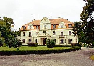 Smolice, Greater Poland Voivodeship Village in Greater Poland, Poland